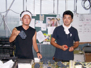 itosuzuki
