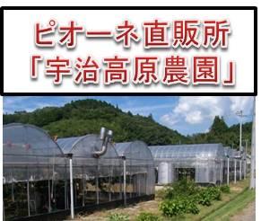 高原農園icon