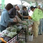 こちらは市民供出の野菜コーナいい品を選定中